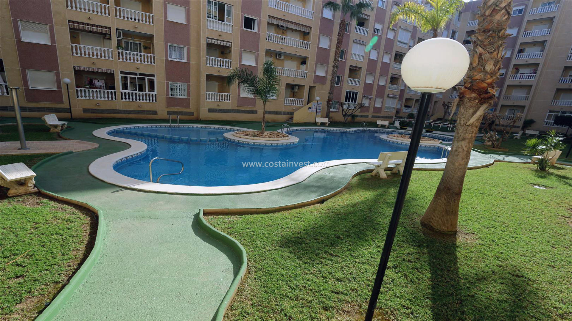 Appartement -                                       Torrevieja -                                       1 chambres -                                       4 occupants